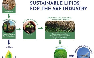 I biocarburanti e l'innovazione per la riduzione dell'impatto ambientale nei trasporti, D. Chiaramonti