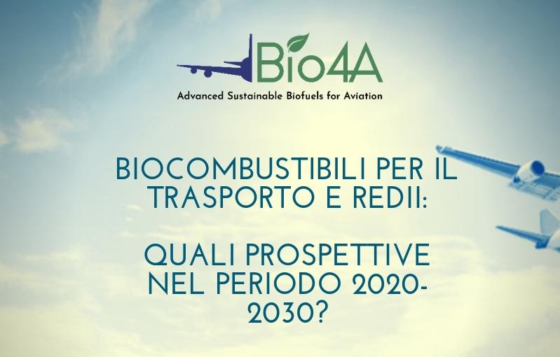 Biocombustibili per il trasporto e REDII: quali prospettive nel periodo 2020-2030?