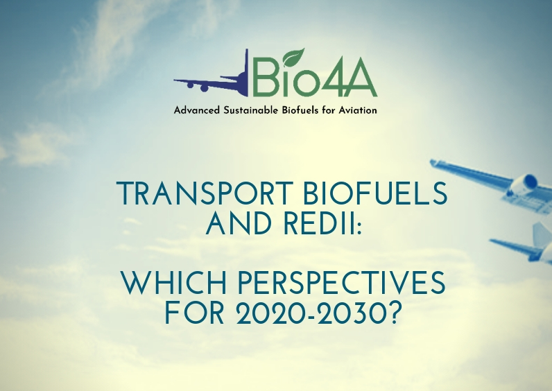 Transport Biofuels and REDII: which perspectives for 2020-2030?