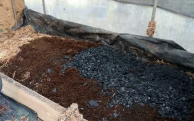 """Production and characterization of co-composted biochar and digestate from biomass anaerobic digestion"" published on Biomass Conversion and Biorefinery"
